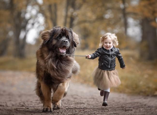 Bộ ảnh đẹp đến nao lòng của các bé chụp cùng thú cưng khổng lồ khiến ai nấy đều phải ngẩn ngơ, trầm trồ - Ảnh 8.