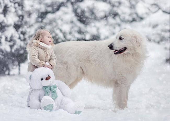 Bộ ảnh đẹp đến nao lòng của các bé chụp cùng thú cưng khổng lồ khiến ai nấy đều phải ngẩn ngơ, trầm trồ - Ảnh 9.