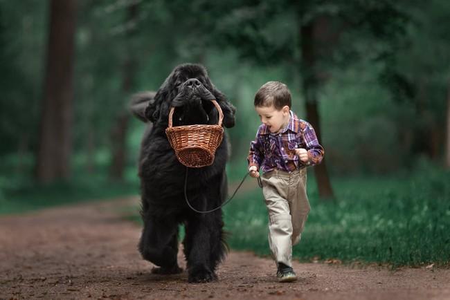Bộ ảnh đẹp đến nao lòng của các bé chụp cùng thú cưng khổng lồ khiến ai nấy đều phải ngẩn ngơ, trầm trồ - Ảnh 10.