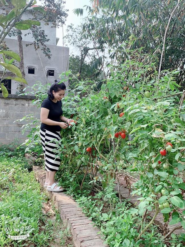 Ngôi nhà ở ngoại ô xanh mát như một công viên thu nhỏ của vợ chồng diễn viên Hồng Đăng - Ảnh 9.