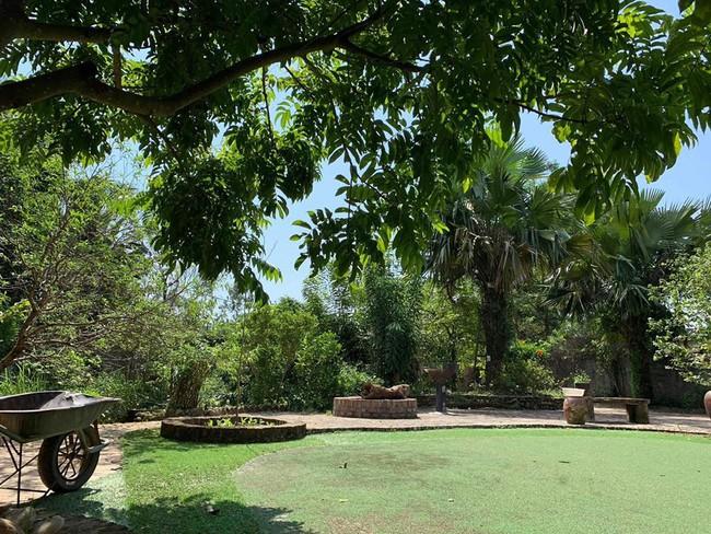 Ngôi nhà ở ngoại ô xanh mát như một công viên thu nhỏ của vợ chồng diễn viên Hồng Đăng - Ảnh 6.