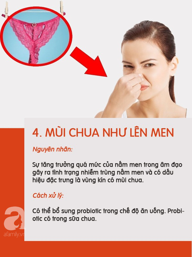 5 loại mùi có thể xuất hiện ở vùng kín chị em nên phân biệt được để biết mình đang bị làm sao - Ảnh 4.