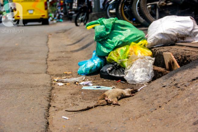 TP.HCM năm 2019: Ngột ngạt vì ô nhiễm không khí, các chỉ số vượt ngưỡng an toàn, đi đâu cũng thấy rác thải - Ảnh 4.