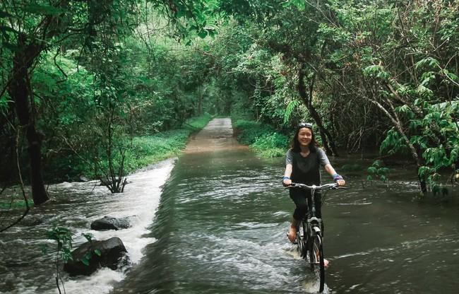 Kỳ nghỉ lễ sắp tới, hãy thử đưa con đến rừng Nam Cát Tiên chơi cùng cá sấu và 4 trải nghiệm lý thú sau - Ảnh 16.