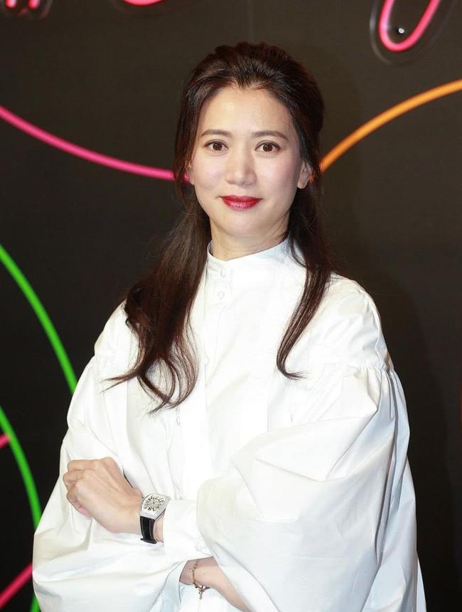 Hoa hậu Hong Kong Viên Vịnh Nghi giữ trọn nét thanh xuân, nhan sắc không một nếp nhăn ở tuổi U50 - Ảnh 8.