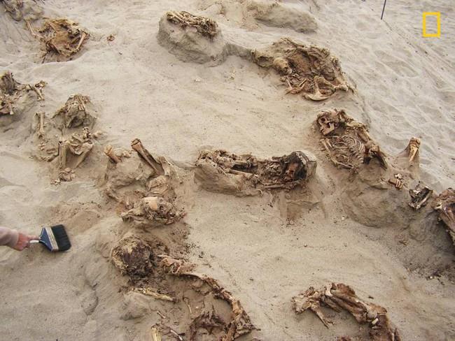 Khai quật khu hiến tế trẻ em lớn nhất lịch sử: Hàng trăm bộ xương lộ ra, đã bị lấy mất nội tạng - Ảnh 2.