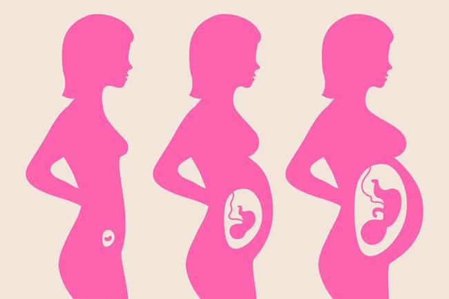 9 sự thật kỳ lạ về việc mang thai chứng minh cơ thể người mẹ quả thực rất tuyệt vời - Ảnh 3.