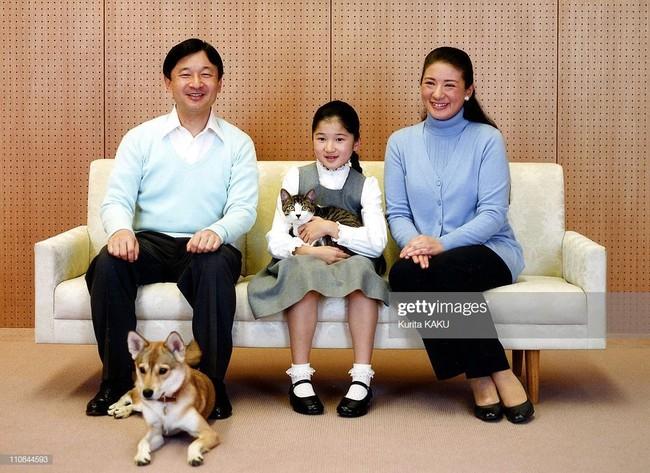 Tân Nhật hoàng Naruhito và vương phi u sầu Masako: Mối tình sét đánh, 6 năm theo đuổi, 3 lần cầu hôn và lời hứa bảo vệ em đến trọn đời - Ảnh 15.