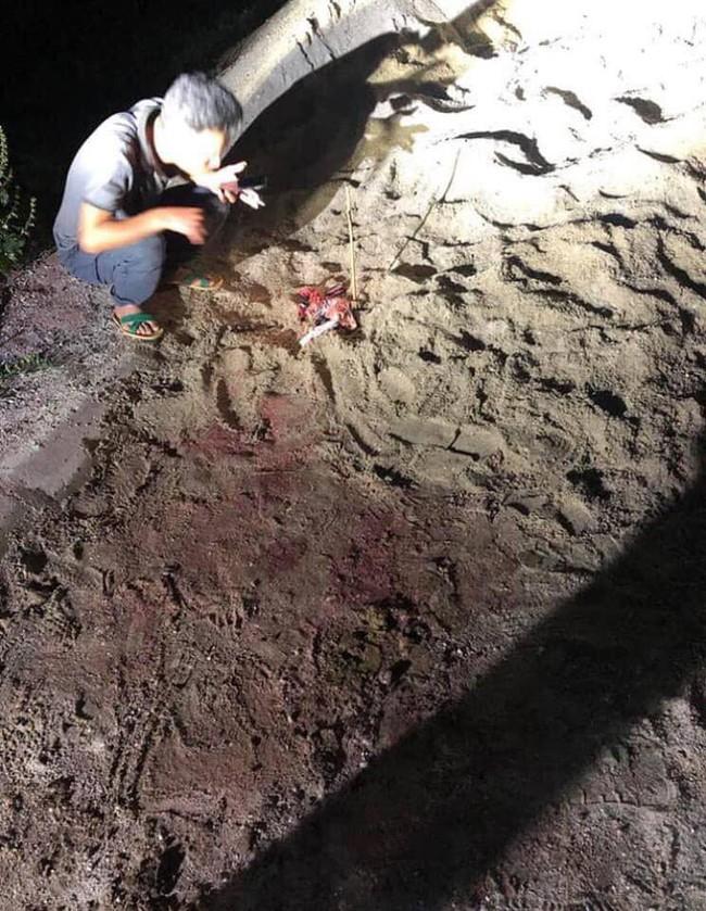 Bé trai 7 tuổi bị đàn chó cắn ở Hưng Yên đã tử vong do đa chấn thương - Ảnh 1.