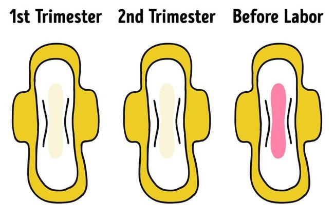 8 dấu hiệu cho thấy các mẹ chuẩn bị lâm bồn đến nơi rồi và những việc cấp thiết cần chuẩn bị ngay - Ảnh 2.