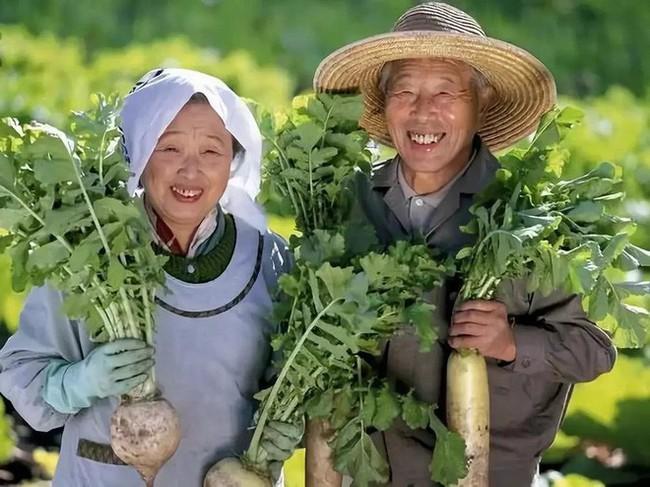 Ngôi làng sống thọ ở Nhật Bản: Ăn 4 loại thực phẩm mỗi ngày giúp đẩy lùi lão hóa, bệnh tật - Ảnh 7.