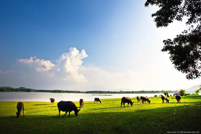 Cách Hà Nội chỉ 40km, đây là địa điểm xanh mát cho gia đình cùng nhau đi trốn dịp cuối tuần - Ảnh 3.