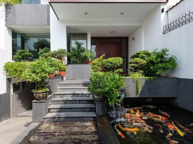 Thiết kế hồ cá tăng cảm giác gần gũi thiên nhiên cho nhà phố - Ảnh 4.