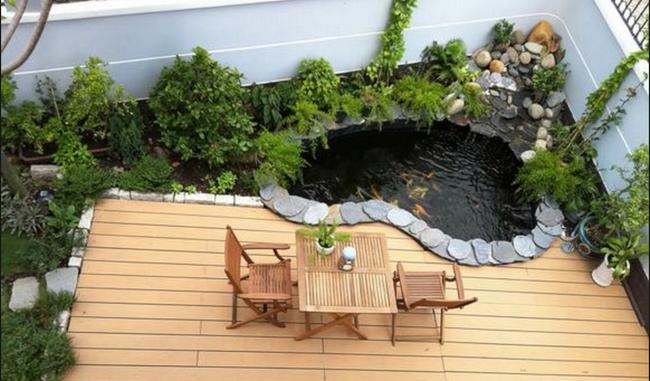 Thiết kế hồ cá tăng cảm giác gần gũi thiên nhiên cho nhà phố - Ảnh 2.