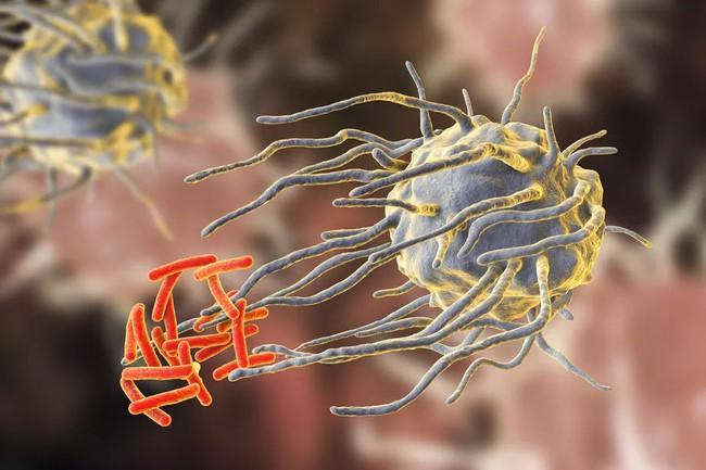 Thuốc kháng sinh đang ngày càng trở nên vô dụng, nhiều bệnh thông thường cũng sẽ không thể điều trị được - Ảnh 2.