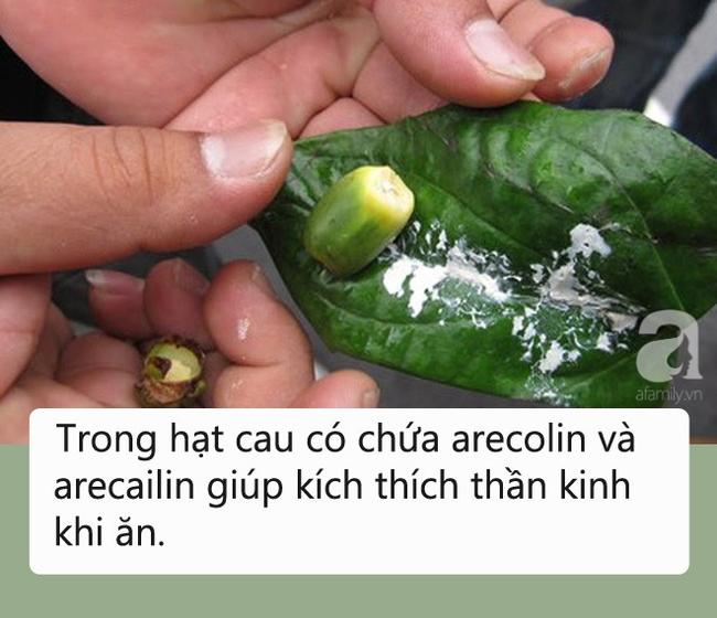 Loại quả người Mỹ, Canada cấm ăn vì ung thư còn người Việt lại mời nhau ăn thật nhiều - Ảnh 1.