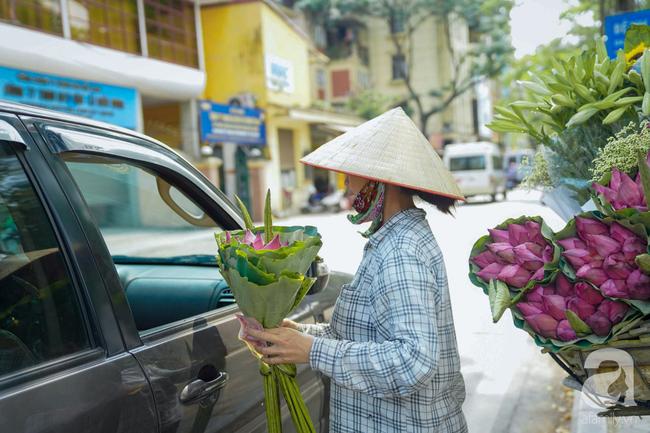 Một mùa sen nữa lại về, Hà Nội lại nhuộm hồng cánh hoa, tươi như thanh xuân của gái chưa chồng - Ảnh 14.
