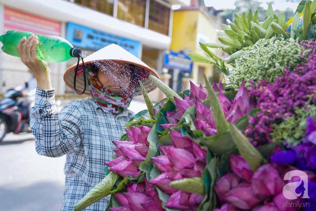 Một mùa sen nữa lại về, Hà Nội lại nhuộm hồng cánh hoa, tươi như thanh xuân của gái chưa chồng - Ảnh 13.