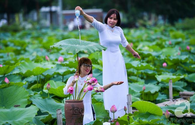 Một mùa sen nữa lại về, Hà Nội lại nhuộm hồng cánh hoa, tươi như thanh xuân của gái chưa chồng - Ảnh 2.