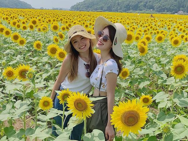 Cánh đồng hoa hướng dương triệu bông đẹp như bức tranh khổng lồ vào mùa thu ở Nhật Bản - Ảnh 9.