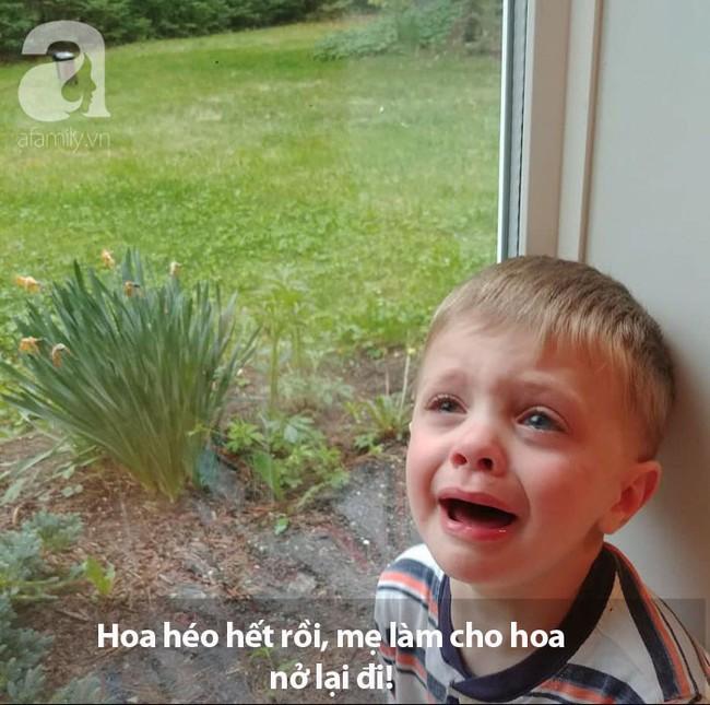 crying-kid-4-5cf0f04681b82__700 copy