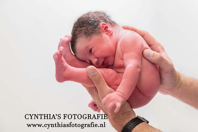 """Bất ngờ với bộ ảnh chụp tư thế bé sơ sinh chào đời """"lọt thỏm"""" tạo dáng y như còn nằm trong bụng mẹ - Ảnh 19."""