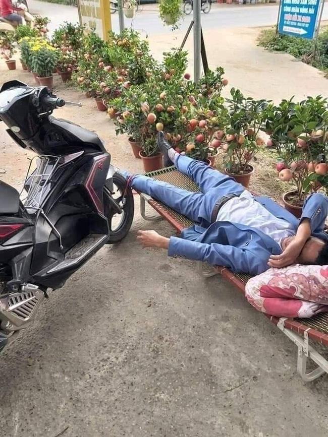 Người đàn ông nằm vật giữa cửa hàng cây cảnh, khóa bánh xe vào chân - Ảnh 1.