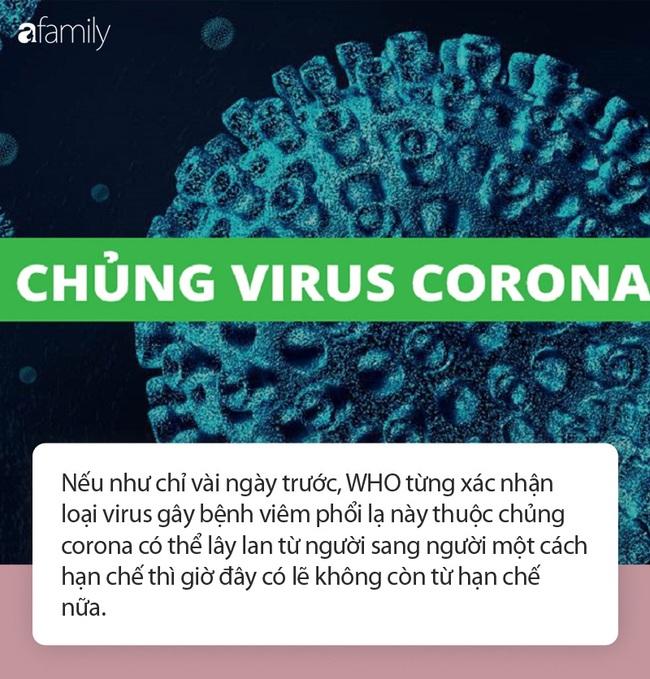 Rùng rợn cơ chế khiến virus corona xâm nhập, biến viêm phổi Vũ Hán thành đại dịch ngay kỳ nghỉ lễ - Ảnh 2.