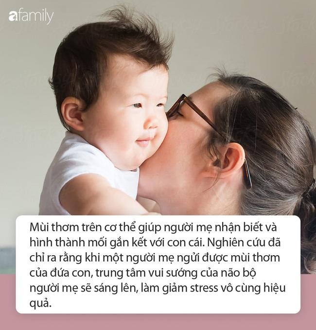 Tiến sĩ Mỹ: Ngửi mùi của con giúp mẹ giảm stress, giải tỏa áp lực cực hiệu quả - Ảnh 1.