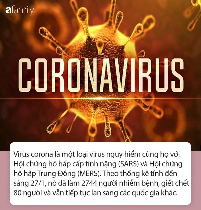 """Tất tần tật thông tin nhanh về virus corona - """"cơn ác mộng"""" làm xáo trộn Trung Quốc, khiến thế giới hoang mang từng ngày - Ảnh 1."""