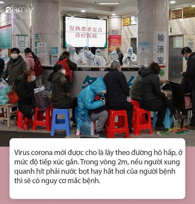 """Tất tần tật thông tin nhanh về virus corona - """"cơn ác mộng"""" làm xáo trộn Trung Quốc, khiến thế giới hoang mang từng ngày - Ảnh 5."""