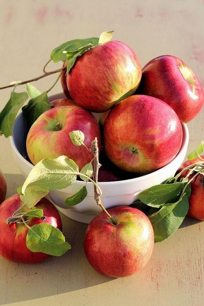 Chăm ăn 7 loại trái cây này thì sau Tết có béo hơn, bạn cũng sớm lấy lại được thân hình siêu thon nuột - Ảnh 3.