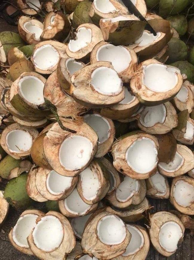 Cận Tết, bà nội trợ Việt nhà nhà mua cùi dừa non 70 ngàn đồng/kg làm mứt, tiểu thương ngày bán cả tạ  - Ảnh 20.