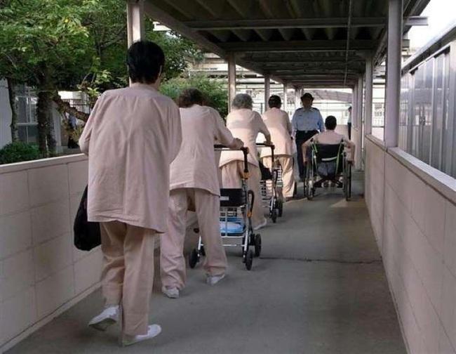 """""""Vào tù dưỡng già"""": Lối thoát cực đoan của những người phụ nữ cô độc và hệ quả nghiêm trọng đè nặng xã hội Nhật Bản - Ảnh 3."""