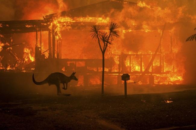 Tổng cộng 183 người bị bắt vì vô tình hoặc cố ý gây ra thảm họa cháy rừng ở Úc - Ảnh 2.