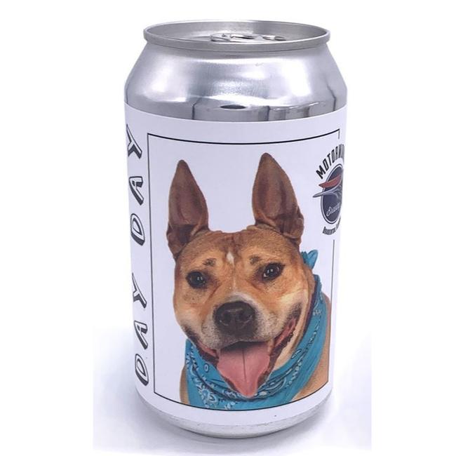 Mất chú chó cưng 3 năm, người phụ nữ không ngờ tình cờ tìm thấy hình ảnh con vật được in trên lon bia - Ảnh 2.