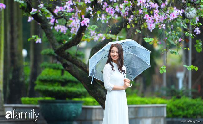 Những ngày ảm đạm vì dịch bệnh và mưa rét, chẳng ai nhận ra hoa ban tím đã lặng lẽ bung nở từ khi nào - Ảnh 5.