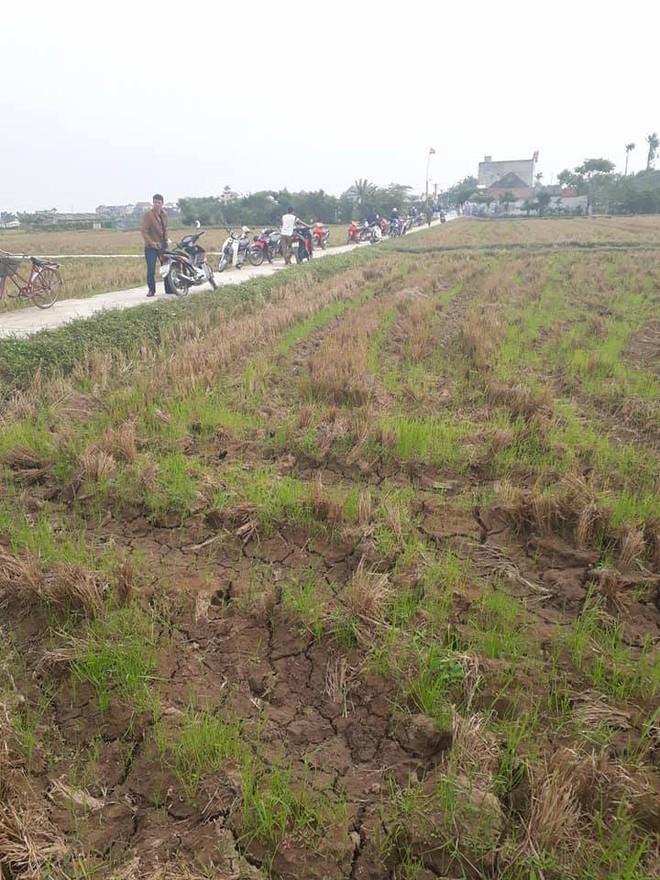 Nam Định: Phát hiện thi thể cô gái dưới mương nước - Ảnh 1.