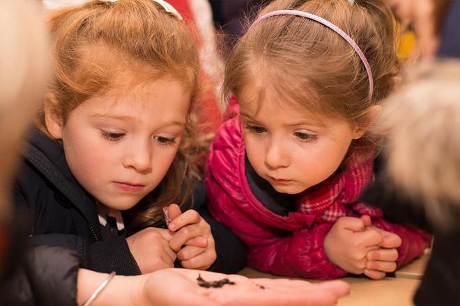 Ngôi trường mầm non danh tiếng phải đăng kí từ lúc mới chào đời, nơi công chúa Charlotte sẽ theo học - Ảnh 12.