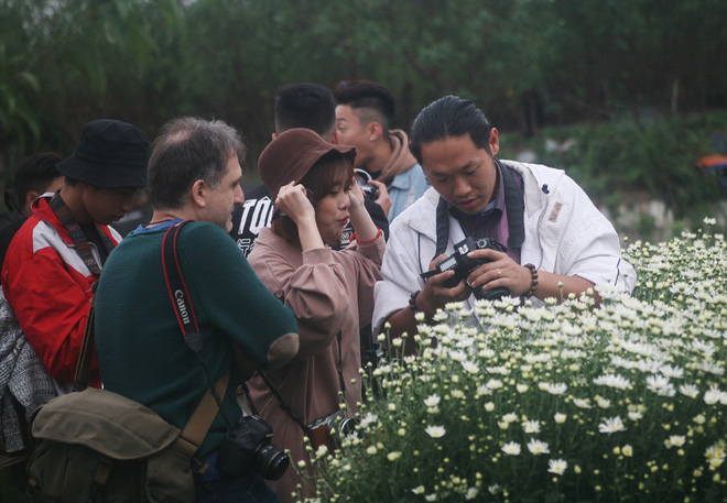 Hà Nội: Bất chấp trời lạnh, nhiều người vẫn ùn ùn kéo đến thả dáng với cúc họa mi - Ảnh 2.