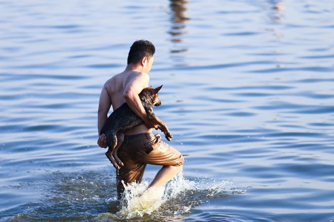 Nắng nóng đỉnh điểm, chủ mặc kín như ninja lội nước, chó cưng vùng vẫy ở Hồ Tây - Ảnh 7.