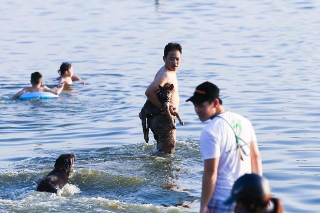 Nắng nóng đỉnh điểm, chủ mặc kín như ninja lội nước, chó cưng vùng vẫy ở Hồ Tây - Ảnh 8.