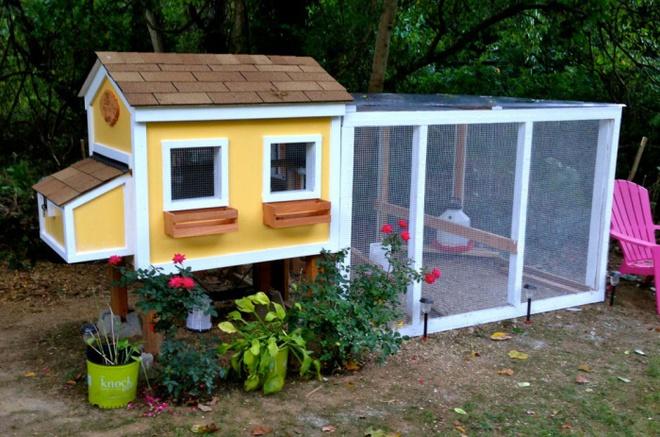 Những ngôi nhà nhỏ xinh đẹp như khách sạn dành cho… gà vịt - Ảnh 1.