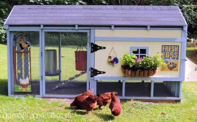 Những ngôi nhà nhỏ xinh đẹp như khách sạn dành cho… gà vịt - Ảnh 9.