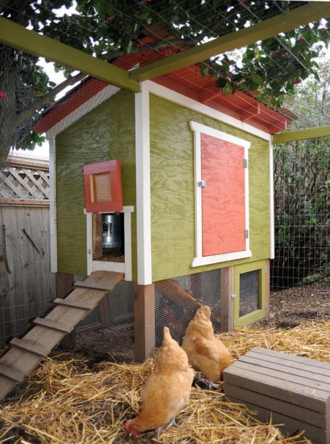 Những ngôi nhà nhỏ xinh đẹp như khách sạn dành cho… gà vịt - Ảnh 10.
