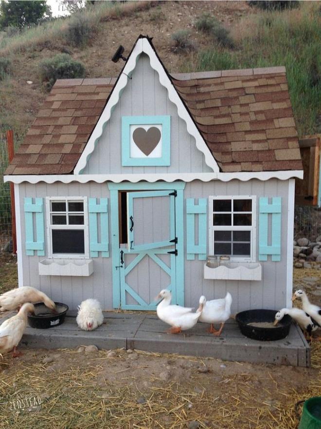 Những ngôi nhà nhỏ xinh đẹp như khách sạn dành cho… gà vịt - Ảnh 17.