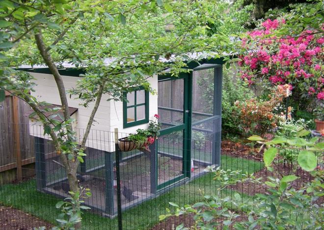 Những ngôi nhà nhỏ xinh đẹp như khách sạn dành cho… gà vịt - Ảnh 21.