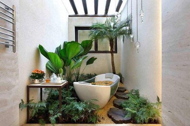 """""""Nhà tắm thực vật"""" – cách đơn giản để nhà tắm thêm mát mẻ trong ngày hè nắng nóng"""