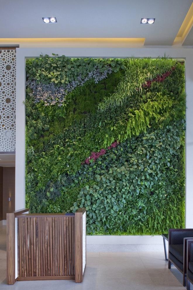 7 lý do khiến những bức tường xanh được các gia đình lựa chọn nhiều đến vậy - Ảnh 1.