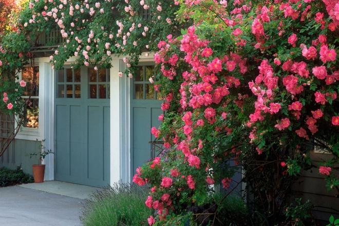 18 cách cực hay mà đơn giản để làm mới sân vườn nhà bạn - Ảnh 8.